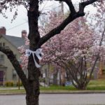 Wiscasset Displays White Ribbons as Symbol of Hope