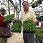 New Lincoln County Business Offers Delivery of Microgreens