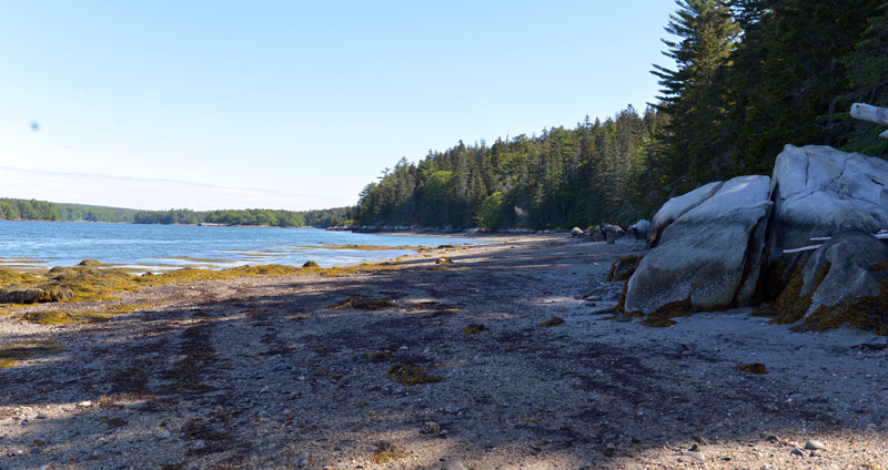 Sand Beach from the West Side Trail on Hog Island. (Paula Roberts photo)