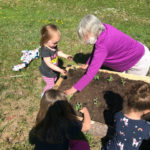 CLC YMCA Collaborates with Spear's Vegetable Farm