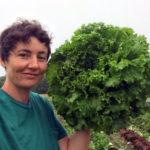 Harvest Begins at Food Bank Farm