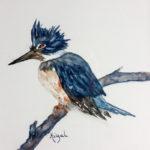 Art Show Features Maine Shorebirds