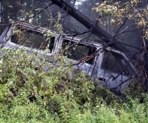 A tree down on top of a Chrysler Town & Country minivan in woods off Route 235 in Waldoboro, near the Warren town line, Monday, Aug. 10. The van caught fire after the crash. (Alexander Violo photo)
