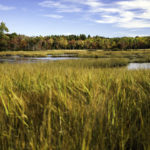 Boothbay Region Land Trust Accredited