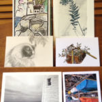 Saltwater Gallery Greeting Cards