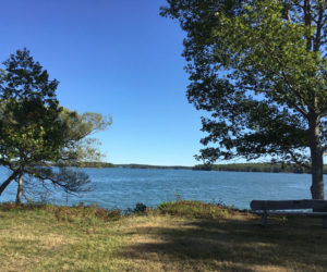 A view of Broad Cove from the Hay Conservation and Recreation Area in Bremen. The state has extended a seasonal closure of the cove's clam flats from Sept. 30 to Nov. 30. (Photo courtesy Amanda Gavin)