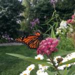 Garden Club News