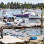 Island Institute Awarded Contract to Support Marine Economy
