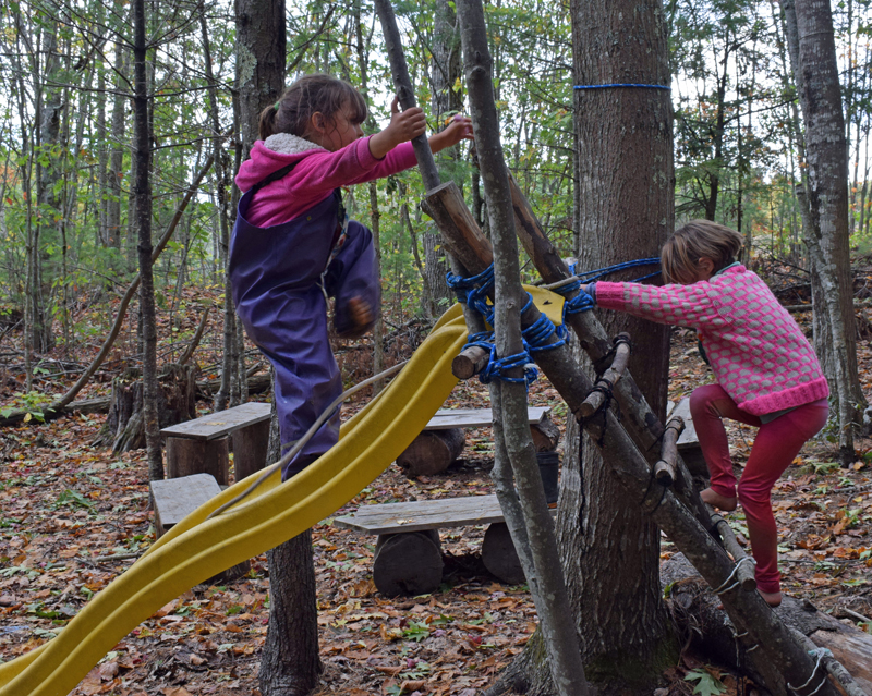 """Early childhood students at Juniper Hill School for Place-Based Education climb on a slide in the """"Salamander Woods."""" (Evan Houk photo)"""