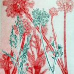 Printmaker at Saltwater Gallery