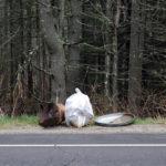 Elmer Tarr Bristol Roadside Cleanup