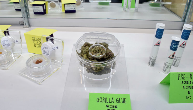 Coastal Cannabis Co. LLC in Damariscotta sells cannabis concentrates, flower, and joints to anyone 21 or older. The business is the first recreational cannabis shop to open in Lincoln County. (Evan Houk photo)