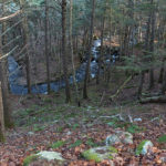 Guided Montville Hike Offered