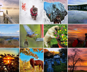 The 12 monthly winners of the 2020 #LCNme365 photo contest.
