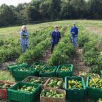 Twin Villages Foodbank Farm Sets 2021 Goal