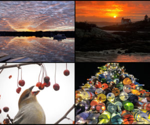 The four weekly winners of the January #LCNme365 photo contest. Voting for the monthly winner opened at noon, Wednesday, Jan. 20 and will close at 5 p.m., Monday, Jan. 25.