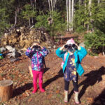 Mid-Coast Audubon Bird Feeding Stations
