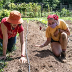 AmeriCorps Position at Veggies to Table