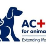 First National Banks Donates to Action for Animals