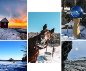 The five weekly winners of the March #LCNme365 photo contest. Voting for the monthly winner opened at noon, Wednesday, March 24 and will close at 5 p.m., Monday, March 29.