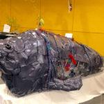 Damariscotta Climate Change Artist Presentation