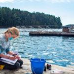 Darling Marine Center Seeks Summer Student Researchers