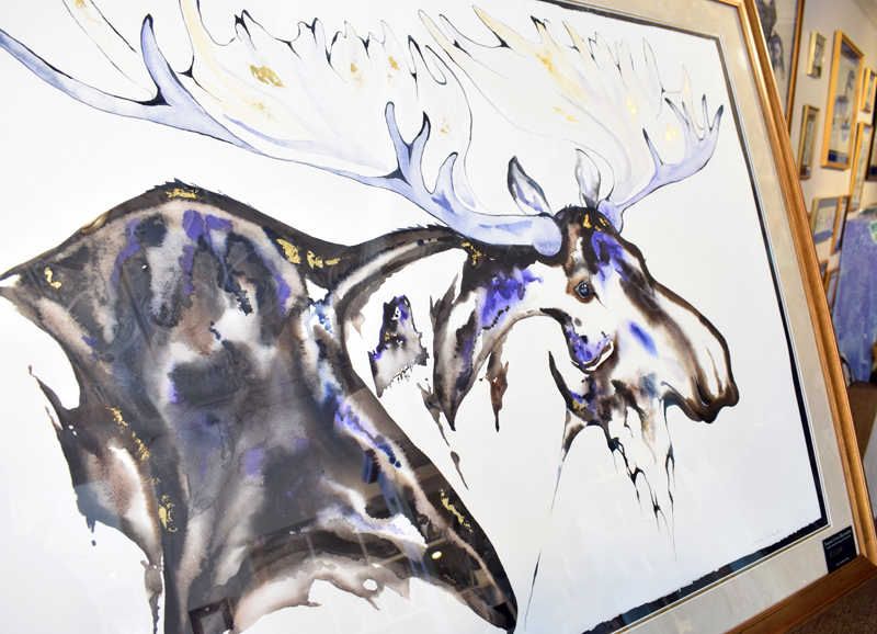 A watercolor painting of a moose by Sarah Richards is displayed in her new gallery in Damariscotta on Saturday, April 3. (Evan Houk photo)