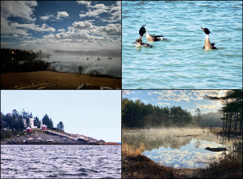The four weekly winners of the April #LCNme365 photo contest. Voting for the monthly winner opened at noon, Wednesday, April 21 and will close at 5 p.m., Monday, April 26.