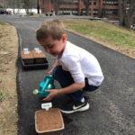 Botanical Gardens, Boothbay Elementary Collaborates Gardening Program