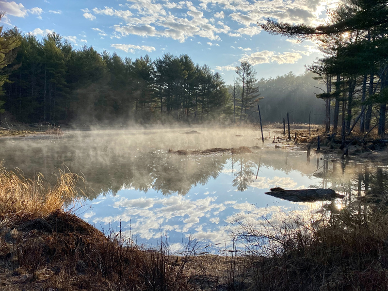 Germaine Waltz's photo of a beaver pond from her home in Jefferson won the April #LCNme365 photo contest. Waltz will receive a $50 gift certificate to Renys, the sponsor of the April contest, and a canvas print of her photo courtesy of Mail It 4 U, of Newcastle.