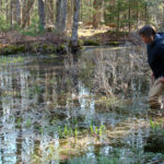 Coastal Rivers Offers Online Class on Vernal Pools