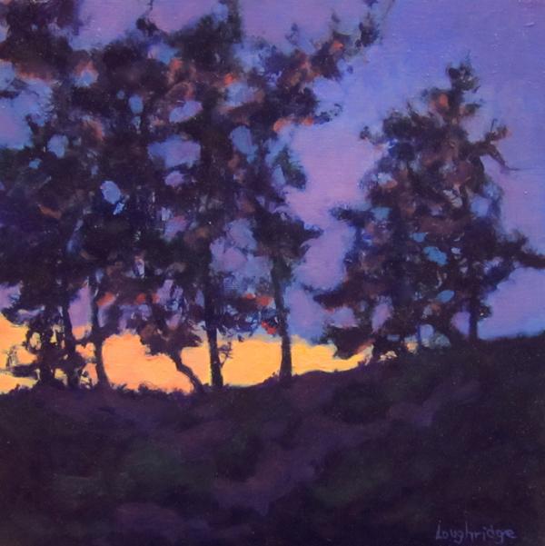 """Light's Descent"" by Sally Loughridge."