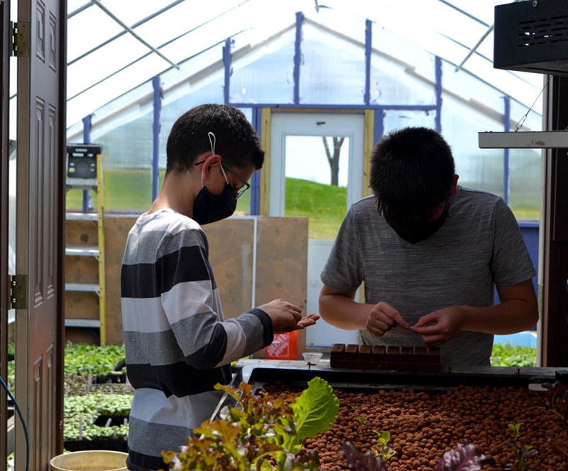 Seventh grade students Donovan Thompson (left) and Benjamin Sullivan (right) count lettuce seeds to plant using the Whitefield Elementary School's aquaponics system. (Nettie Hoagland photo)