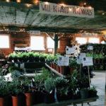 Morris Farm Plant Sale This Saturday