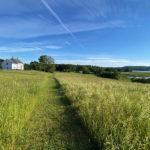 Guided Hike at Coastal Rivers Salt Bay Farm