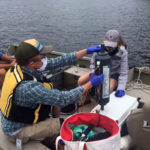 Midcoast Conservancy to Offer Cyanobacteria Webinar