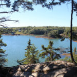 Guided Hike at Tracy Shore Preserve with Coastal Rivers