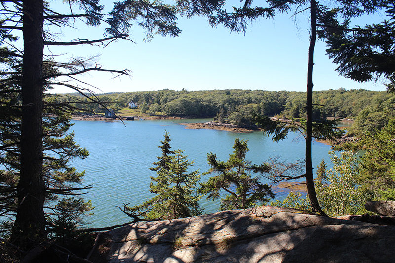 Tracy Shore Preserve features coastal spruce forest and views of Jones Cove in South Bristol.