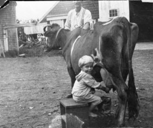 A very young Frank Flagg (born 1922) milks the family cow under the proud eye of his father, Forrest Flagg. This is one of many vintage photos featured in the 2022 edition of the Jefferson Historical Calendars now available.