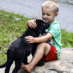 Missing Jefferson Puppies Return Home