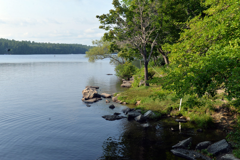 The swimming area in Damariscotta Mills had a recent outbreak of Cyanobacteria last week. Signs warn swimmers to swim at own risk. (Paula Roberts photo)
