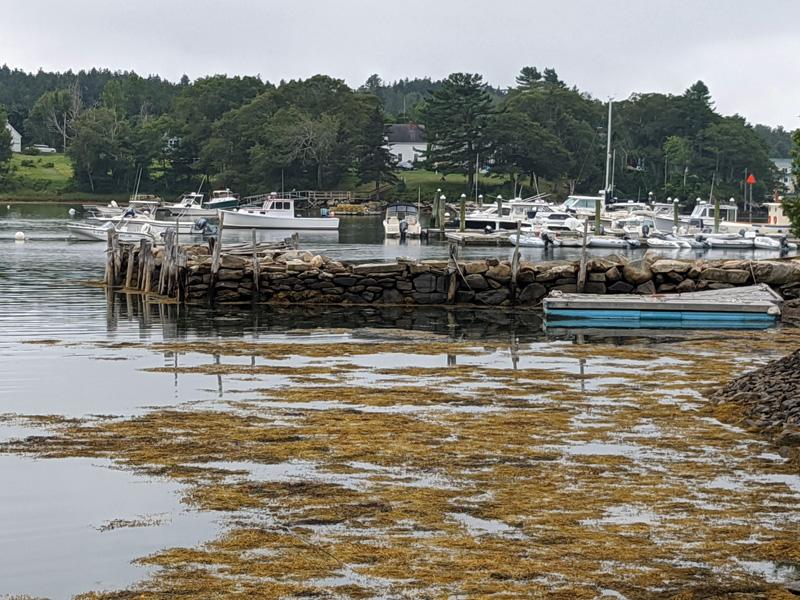 Old Stone Wharf. (Photo courtesy David Andrews)
