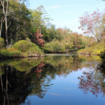 Guided Hike at Crooked Farm Preserve with Coastal Rivers