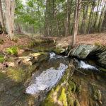 New Coastal Rivers Preserve Expands River-Link Corridor