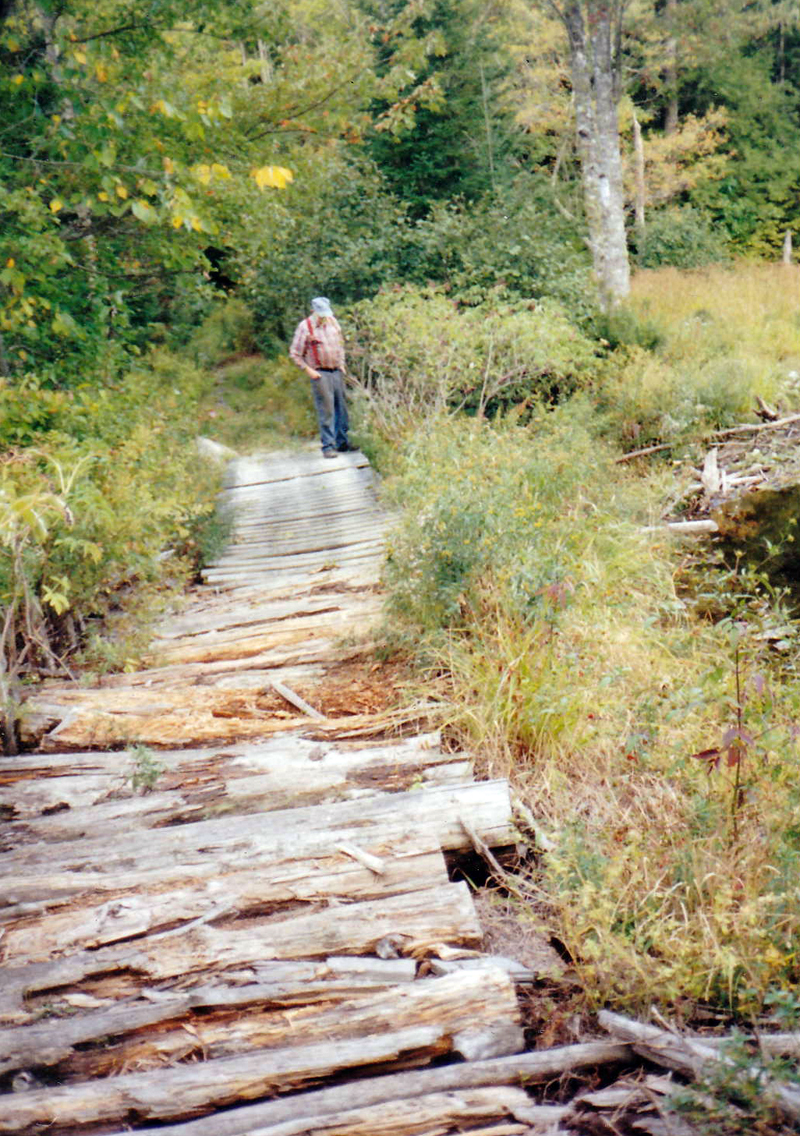 Deer Meadow Brook between East and West Old County roads (Courtesy Arlene Cole)