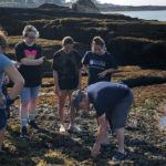 First-Year UMaine Students Dive Into Marine Sciences at Darling Marine Center