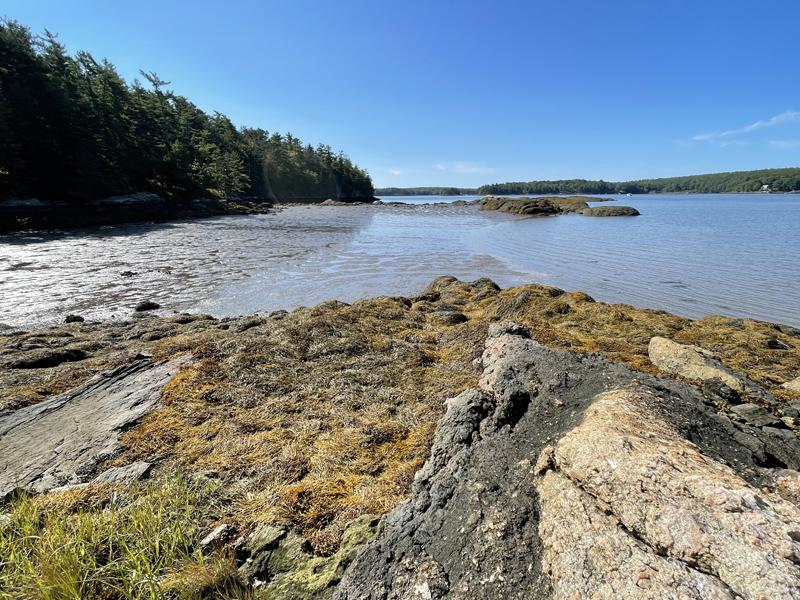 "A low tide view of ""Thomas' Great Toe"" at Bonyun Preserve's Thomas Cove, on Saturday, Sept. 11. (Raye S. Leonard photo)"