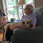Henry: A Dog's Life in Maine