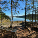 Guided Hike at Seal Cove Shore Preserve with Coastal Rivers