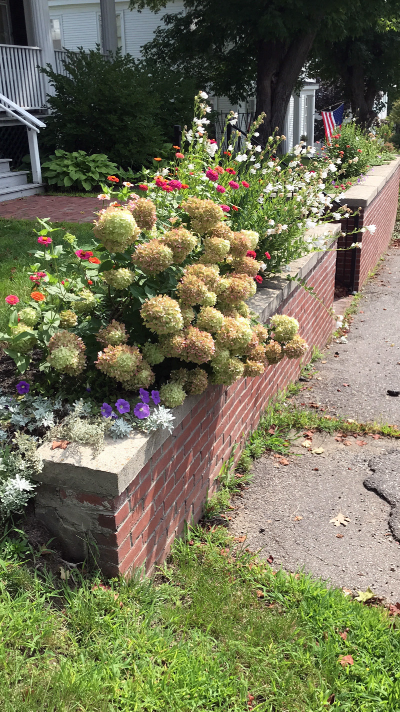 Side view of Wiscasset Green from Washington Street showing gardens maintained by GCW members.